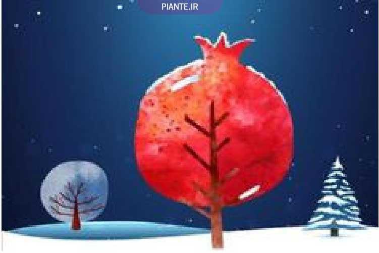 انار و هندوانه شب یلدا